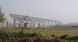 Foto: Brasil da luz verde a 31 parques solares en busca de una diversificación de las fuentes de energía (EUROPA PRESS)