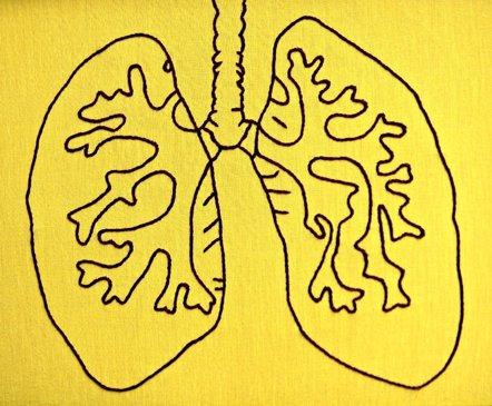 Foto: Hasta uno de cada cinco casos de cáncer de pulmón en España se da ya en no fumadores (FLICKR/HEY PAUL STUDIOS)