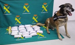 Foto: Detienen a un hombre con 6,5 kilos de cocaína en Ciudadela (GUARDIA CIVIL)