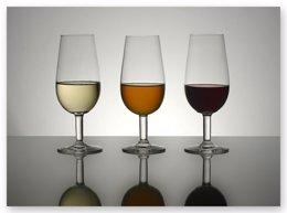 Foto: ¿Cómo se elige el mejor vino tinto español? (FOTOLIBRE)