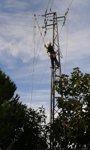 Foto: Endesa finaliza los trabajos de refuerzo eléctrico en la zona rural de Lora del Río