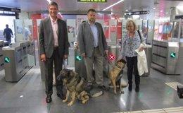 Foto: Metro de Madrid estudia permitir el acceso de perros como el suburbano de Barcelona (EUROPA PRESS)