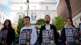 Foto: Animalistas protestan contra la práctica de obtención del 'foie gras' ante embajadas y consulados franceses en Europa (IGUALDAD ANIMAL)