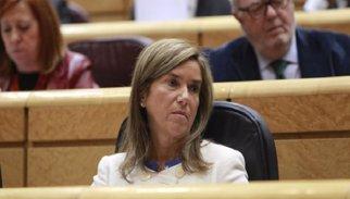 CATALUNYA.-El PSC aplaudeix la dimissió i demana a Rajoy explicacions sobre la vinculació de Mato amb la Gürtel
