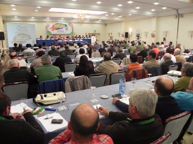 """Foto: UPA-UCE Extremadura analiza en su V Congreso Regional los """"retos de futuro"""" a los que se enfrenta el sector"""