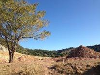 Lugar en Alfacar donde podría estar enterrado García Lorca