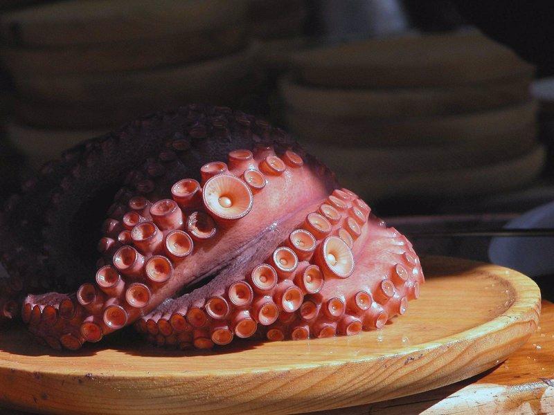 Asturias abre este lunes la campaña de pesca del pulpo desde la ... - Europa Press