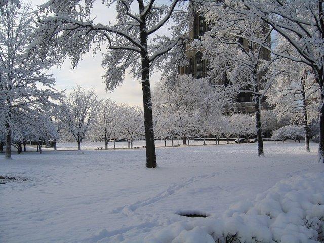 Foto: ¿Cuándo empieza el invierno?