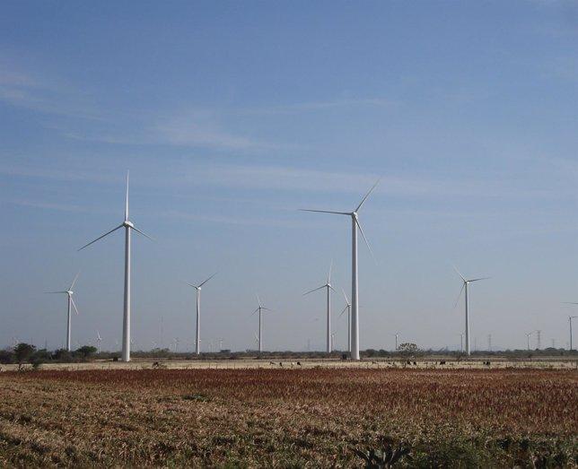 Paque eólico de Gamesa en México