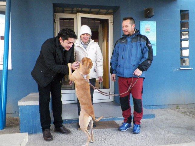 Romero recoge el perro del CIPA