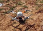 Foto: Los drones, los nuevos pastores de ganado del sigo XXI