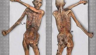 La momia de Ötzi, el Hombre de Hielo, presenta 61 tatuajes
