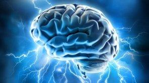 Foto: Una región del cerebro vulnerable al envejecimiento es mayor en aquellos con la variante del gen de la longevidad (FLICKR/ALLAN AJIFO)