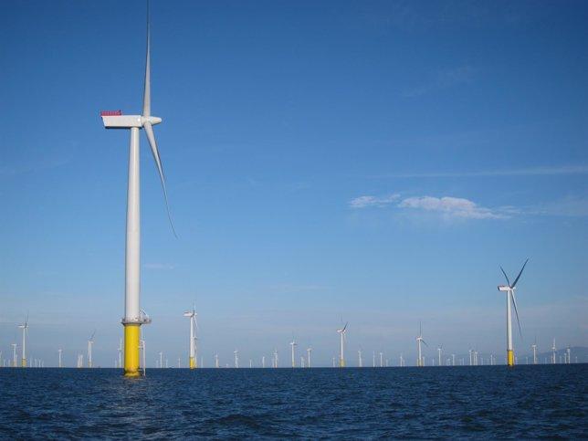 Iberdrola, parque eólico marino