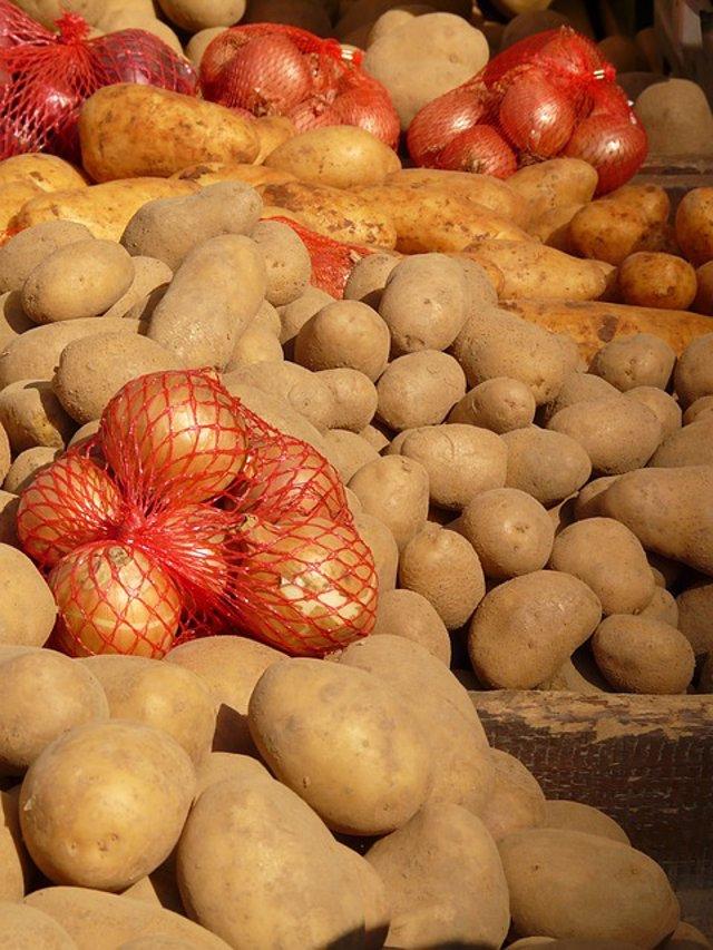 cebollas y patatas.jpg