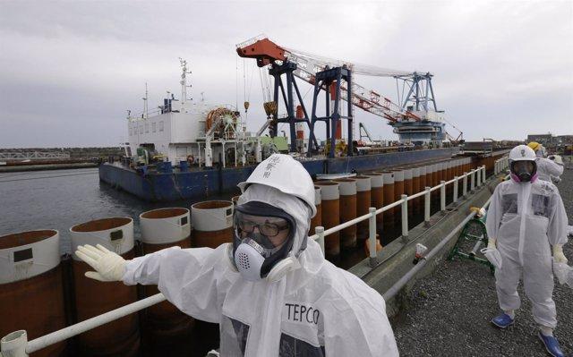 Foto: Nuevas filtraciones de agua radiactiva al mar en Fukushima