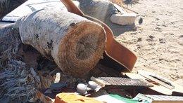 Foto: Atacado el 'Joshua Tree de U2' en el desierto de Mojave (ATU2.COM)