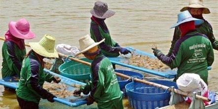 Foto: Consecuencias de la trata en la salud de las víctimas (REUTERS)