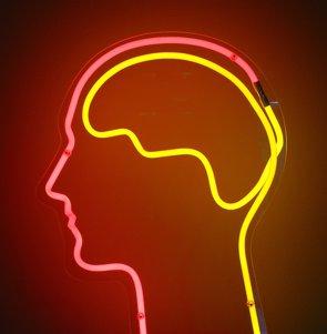 Foto: El cerebro recicla los recursos neuronales adquiridos durante su evolución para afrontar nuevos retos (FLICKR/DIERK SCHAEFER)