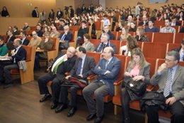 Foto: Los diez equipos finalistas de STARinnova defienden sus proyectos (GOBIERNO)