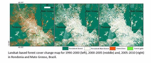 Foto: La destrucción de selva tropical crece un 62% este siglo