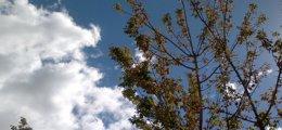 Foto: La semana comienza con temperaturas en ascenso en gran parte del país y con predominio de cielos nubosos (EUROPA PRESS)