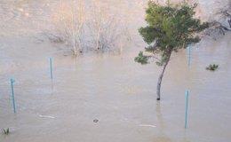 Foto: Protección Civil mantiene la alerta por riesgo de desbordamiento del Ebro (EUROPA PRESS)