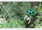 Foto: Así se ve la selva amazónica desde Google Street View y desde una tirolina