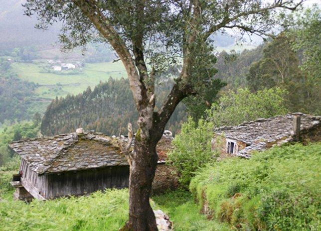 Valle de Eo