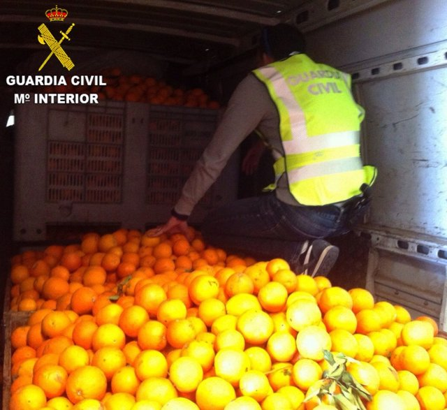Foto: Detenidas 15 personas por el robo de 100.000 kilos de naranjas