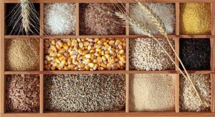 Foto: Descubre los beneficios de consumir cereales enteros (GETTY//EGAL)