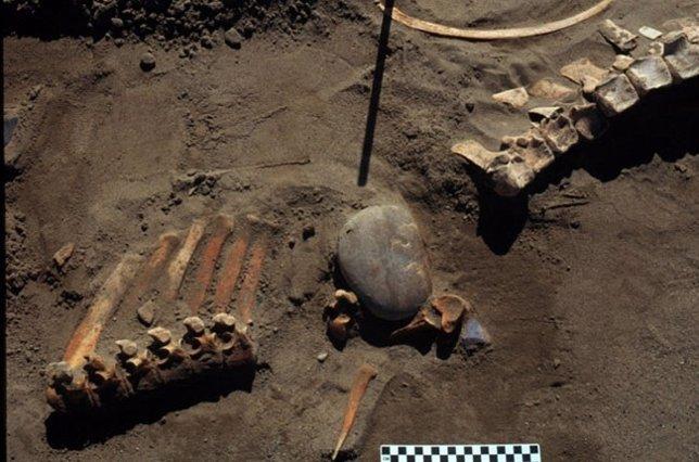 Humanos de la Edad de Hielo cazaron en Norteam�rica hace 13.300 a�os