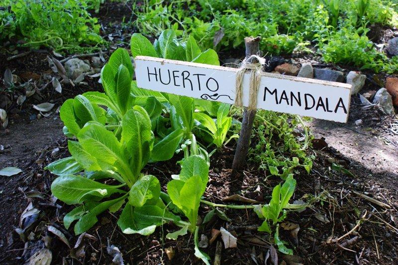 6 sencillos pasos para crear tu propio huerto urbano diy - Como cultivar un huerto ...