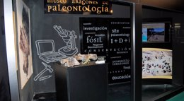 Foto: La Fundación Dinópolis presenta los últimos hallazgos en el yacimiento 'La Tejería', situado en El Castellar (FUNDACIÓN DINÓPOLIS)