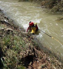 Foto: Bomberos rescatan a una joven que se lanzó al Túria para salvar a uno de sus perros (CONSORCIO BOMBEROS)