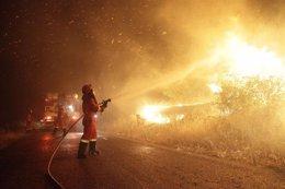 Foto: Este sábado comienza la época de peligro medio de incendios (EUROPA PRESS/UME)