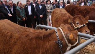 """Mas assenyala la indústria agroalimentària com """"puntal"""" de l'economia"""