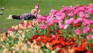 La primavera influeixen positivament en l'estat d'ànim i l'atracció sexual
