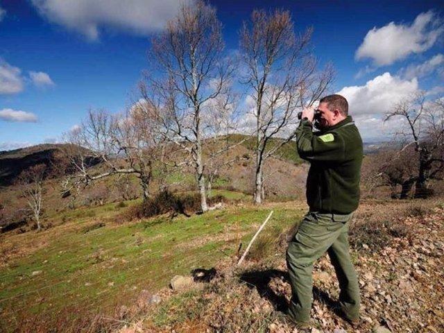Foto: Las Hurdes tendrán el primer Plan de Ordenación de los Recursos Forestales del país