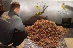 Foto: Successos.- La Guàrdia Civil intervé 92 quilos de coral vermell a La Jonquera (GUARDIA CIVIL)