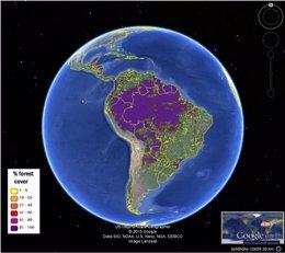 Foto: Nuevos mapas globales de cubierta forestal versión 'crowdsourcing' (IIASA GEO-WIKI PROGRAM)