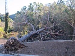 Foto: La Diputació de Barcelona destina 3 milions als danys del temporal de desembre (EUROPA PRESS)