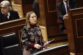 Foto: El PSOE 'bombardeará' a Pastor con preguntas sobre el AVE en plena polémica (EUROPA PRESS)