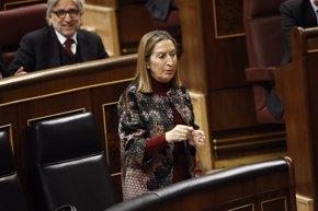 Foto: El PSOE 'bombardeará' mañana a Pastor con preguntas sobre el AVE (EUROPA PRESS)