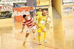 Foto: El Jaén certifica la cuarta plaza tras ganar al Palma Futsal (PEDRO JESÚS CHAVES)