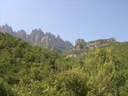 Foto: FGC invita les Montserrat al Santuari per la seva onomàstica (DIPUTACIÓN DE BARCELONA)