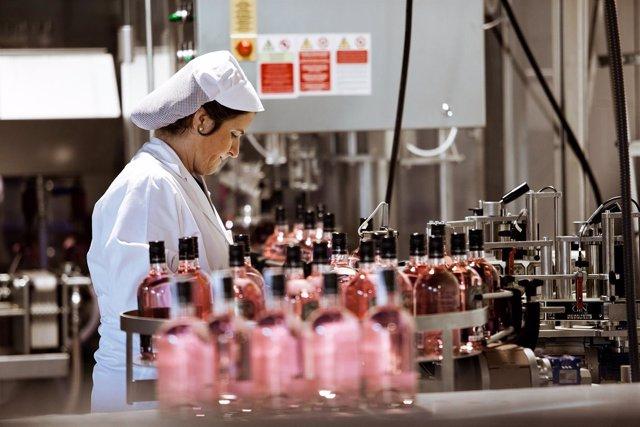 Foto: La ginebra Puerto de Indias aumenta por diez su volumen de producción