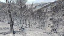 El Infoca da por extinguido el incendio de Quesada (Jaén) con 10.098 hectáreas afectadas por el fuego