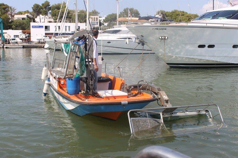 Recogen en agosto una tonelada de residuos al d�a en el litoral balear, un 40% m�s que en 2014