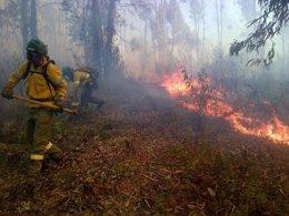 Incendio en Zalamea la Real (Huelva)